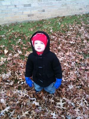 Young Boy Enjoying Fall
